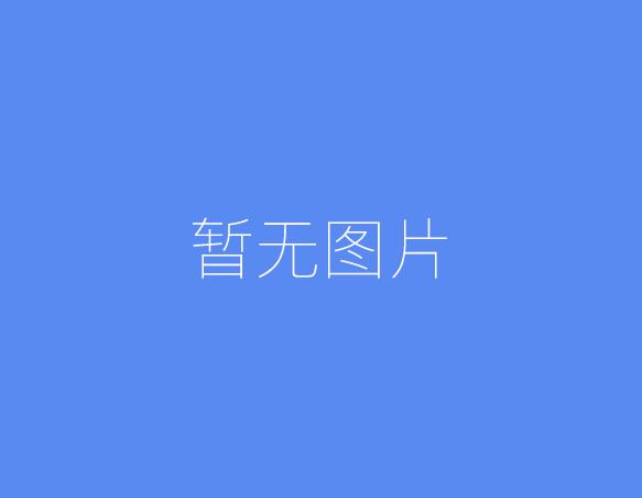 中国十大名表品牌